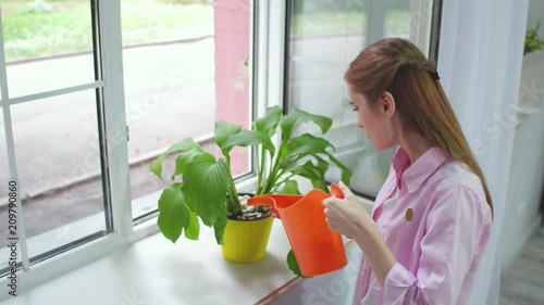 Footage of young pretty woman watering flowers. Girl taking care of home plants.