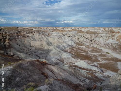 Foto Murales Arizona desert