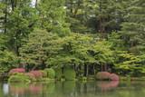 Japanese Garden in Kanazawa, Japan - 209814059