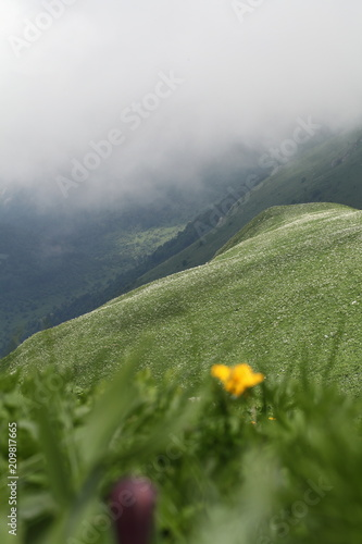Foto Murales Spring landscapes in mountains