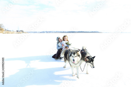 Foto Murales Happy woman and man sledging with huskies on snow. Concept of romantic winter photo session and Alaskan vacations.