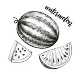 Ink hand drawn Whole Watermelon and Slice. Vector illustration with brush calligraphy style lettering. Elements for design labels, packaging, cards. - 209835649
