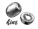 Ink hand drawn Whole kiwi fruit and half kiwi fruit. Vector illustration with brush calligraphy style lettering. Elements for design labels, packaging, cards. - 209835685