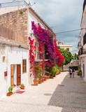 turistas paseando por las calles blancas de Dalt Vila en Ibiza, España. Casas blancas tipicas, decoradas con flores de la isla