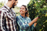 Couple working in vineyard - 209851096
