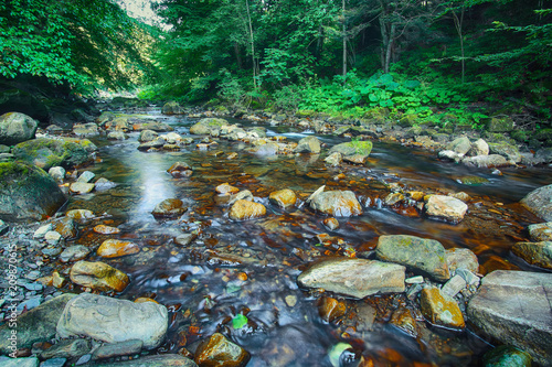 River in the forest. Beautiful natural landscape in the summer time - 209870615