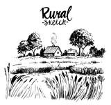 Rural landscape - 209884416