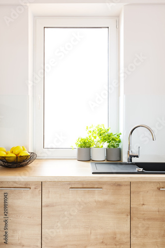 Plants on wooden countertop in bright kitchen interior with window. Real photo