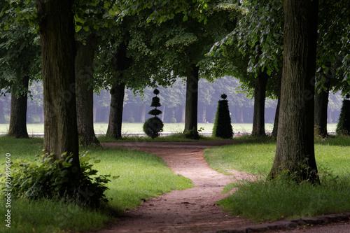 Foto Murales Parc de versailles