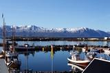 Puerto pesquero en la costa norte de Islandia. - 209898261