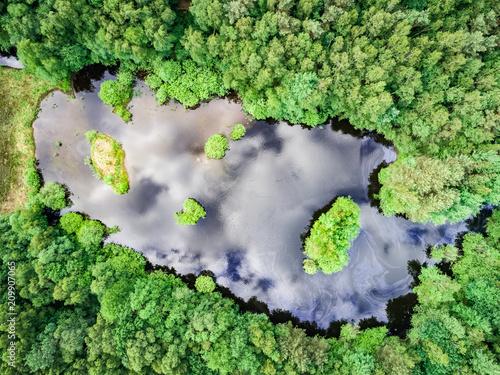 Leinwanddruck Bild Landschaft - Luftbild, kleiner See in einem Wald aus der Vogelperspektive