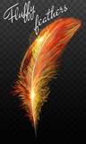 Fire feathers fire bird isolated on a black background. Easy style, can be used in flyers, banners, a web. Elements for design. - 209910254