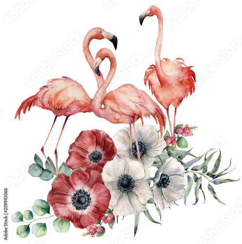 Watercolor flamingo with anemone bouquet. Hand painted exotic birds with flowers, eucalyptus leaves and branch isolated on white background. Wildlife illustration for design, print or background. - 209943066