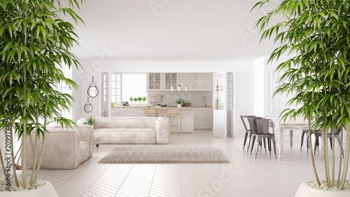 Leinwandbild Motiv Zen interior with potted bamboo plant, natural interior design concept, minimalist white living and kitchen, scandinavian classic architecture