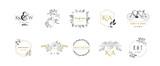 Wedding logos, hand drawn elegant monogram collection