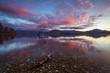 Leinwanddruck Bild - Einsamer Baum, Wanaka - Südinsel von Neuseeland