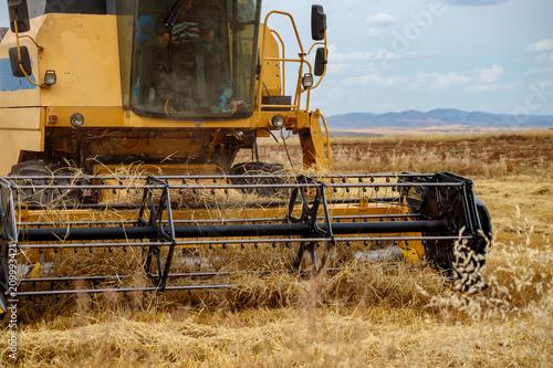 Aluminium Trekker harvester-thresher in the wheat field