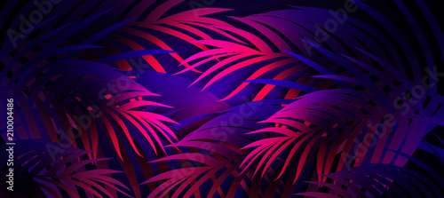 Neon background with tropical leaves - 210004486