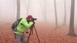 Male landscape photographer in foggy forest taking a photo. Spooky place