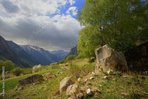 Caucasus in spring - 210018620