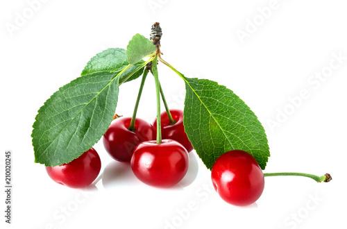 Fotobehang Kersen Ripe cherries