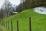 snow hill in hallstatt city - 210031226