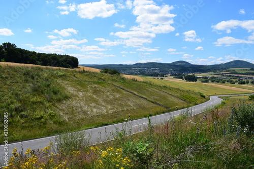 Foto Murales Straße durch reife Felder