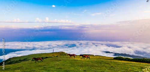 Foto Murales georgian nature