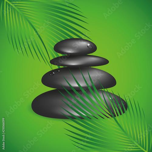 czarne ułożone kamienie zen i zielone liście palmowe