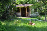 Sielanka przy ogrodowej altanie