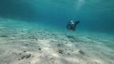 Rafa koralowa - 210073491