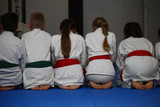 Children sit on the tatami with their backs before the training of judo
