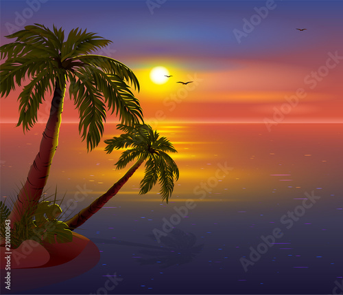 Romantic Sunset on Tropical Island. Palm trees, sea, dark sky and seagulls