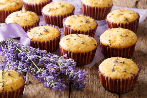 Beautiful background of French muffins with lavender flowers close-up. horizontal - 210108405