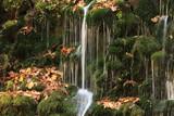 晩秋の元滝伏流水