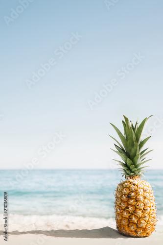 Aluminium Tropical strand Beach background with pineapple