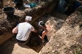 scavo archeologico - 210139090