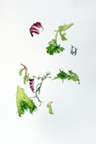 Mix leafy vegetable salad green purple lettuce glass bowl elevated flying dropping - 210141062