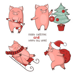 Christmas set of cute little pigs. New Year symbol. Vector illustration.