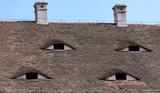 Famous eyes. Windows in the roof made in the form of eyes. - 210162445