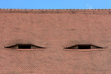 Famous eyes. Windows in the roof made in the form of eyes. - 210162493