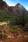 Deertrap mountain in Zion National Park in Utah in United States - 210166865