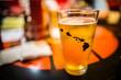 Hawaiian Beer Glass