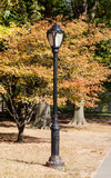 A lamp post in Central Park, New York is pictured against autumn foliage. - 210209271