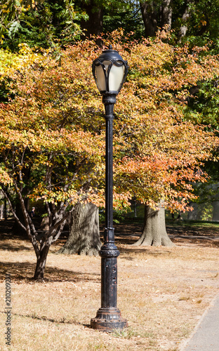Fotobehang New York A lamp post in Central Park, New York is pictured against autumn foliage.