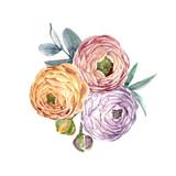 Watercolor floral vector composition - 210216638
