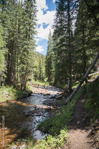 A river running through a forest near Vail, Colorado during summer.  - 210227689