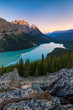 Peyto Lake in Banff National Park, Alberta, Canada at sunrise