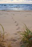 Sand beach in Saulkrasti, foot prints on the sand, Latvia - 210341629