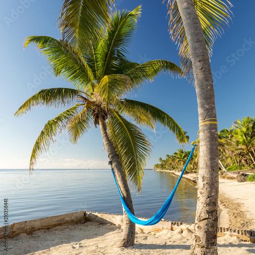 Aluminium Tropical strand Tropical Island Beach With Hammock
